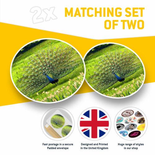 2 x Vinyle Autocollants 10 cm-Peacock Tail Plumes Oiseaux Cool Cadeau #3560