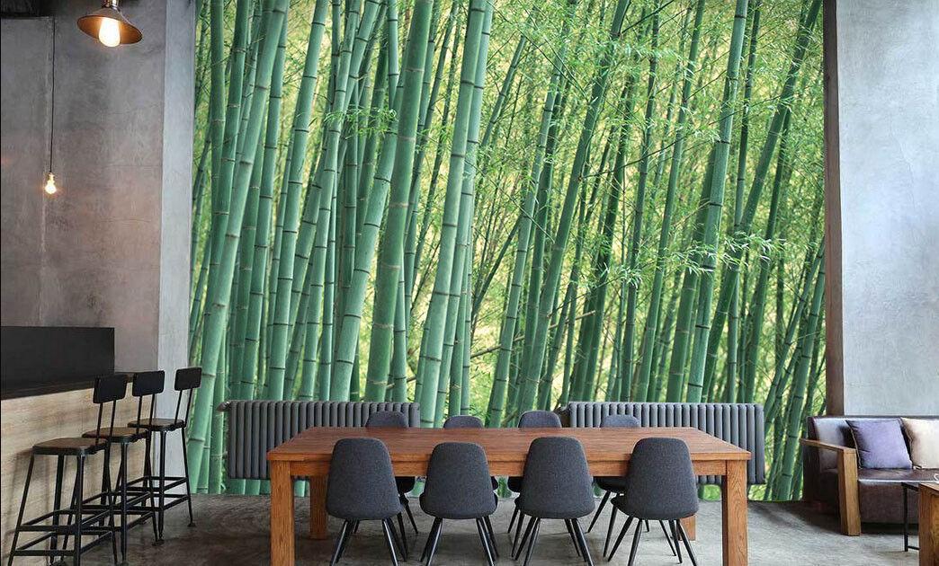 3D Green Bamboos 78  Wall Paper Murals Wall Print Wall Wallpaper Mural AU Kyra