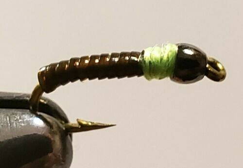 Fly Fishing Flies 12 Beaded Peeping Caddis Larva Lace Nymphs size 16 New Trout