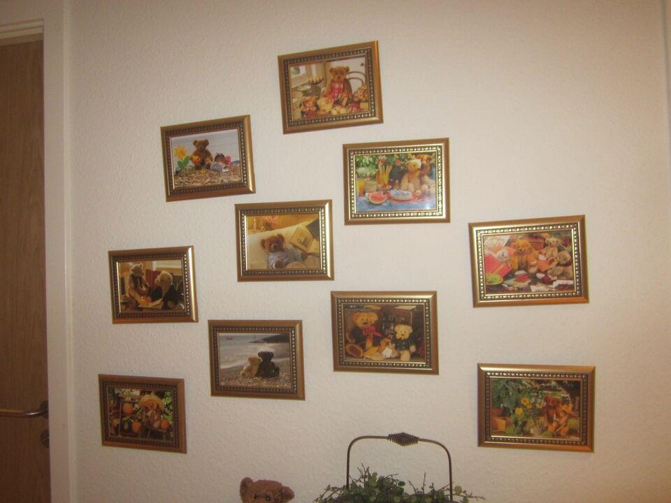 Bamse billeder