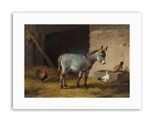PAINTING ANIMAL PORTRAIT HUNT STUDY DONKEY ART PRINT POSTER LAH442A