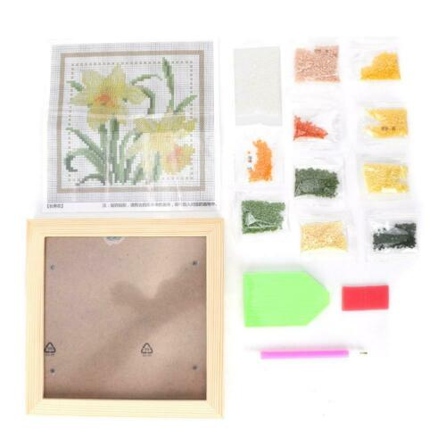DIY Full Drill Diamond Painting Embroidery Cross Crafts Kit Home Decor Gifts