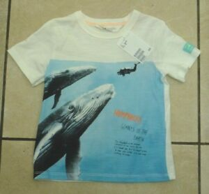 Hm Kids Childrens Humpback Whale T Shirt Size 15 2 Years Bnwt Rrp