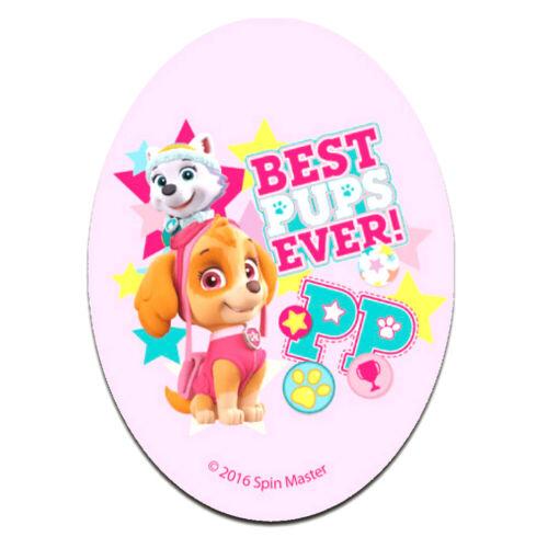 Aufnäher // Bügelbild PAW PATROL BEST PUPS EVER 11 x 8 cm rosa