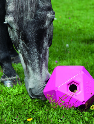 """Shires Horse Pony Equine Ball Feeder Stable Toy Treat Ball All Colors 9/"""""""