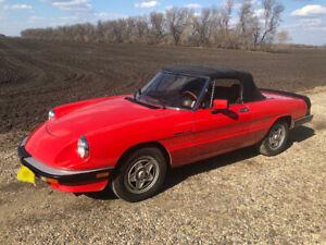 1984 Alfa Romeo Spider Veloce Convertible