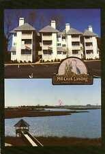 HAMPTON VA bet Buckroe & Phoebus Mill Creek Landing Condos Ad postcard