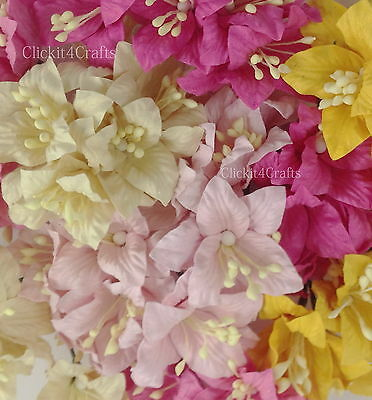 50 Yellow Pink Paper Flower Lily Scrapbook Cardmaking Craft Art Supply LY1-623