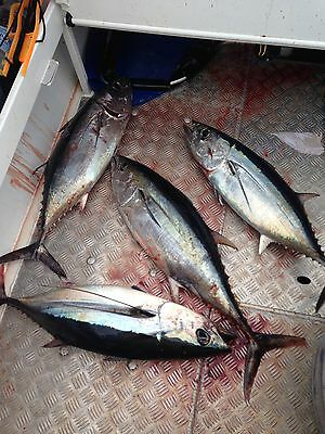 "Hex Head Game Fishing Trolling Lures 8"" Skirted Rigged Marlin Tuna Wahoo 12"