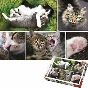 Trefl 1500 Piece Jigsaw Puzzle Just Cat Things