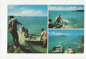 Bermuda Fishermen Hauling Net With Jacks 1981 Postcard 378a - <span itemprop=availableAtOrFrom>Aberystwyth, United Kingdom</span> - I always try to provide a first class service to you, the customer. If you are not satisfied in any way, please let me know and the item can be returned for a full refund. Most purcha - Aberystwyth, United Kingdom