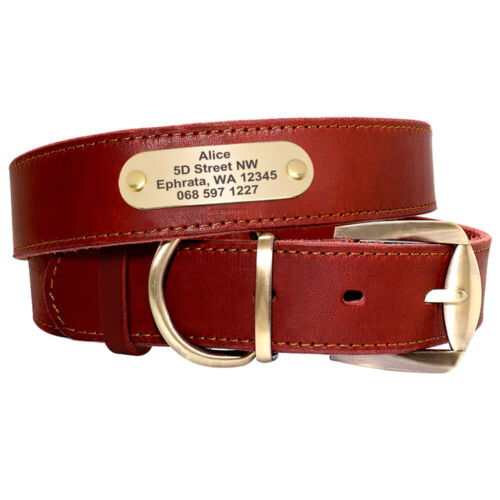 Medium Large Dogs Personalized Genuine Leather Collar ID Name Metal Tag Engraved