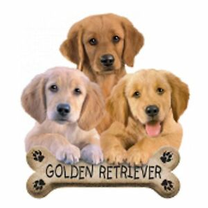 Golden-Retriever-BISQUIT-T-Shirt-Pick-Your-Size-Youth-Medium-to-6-X-Large