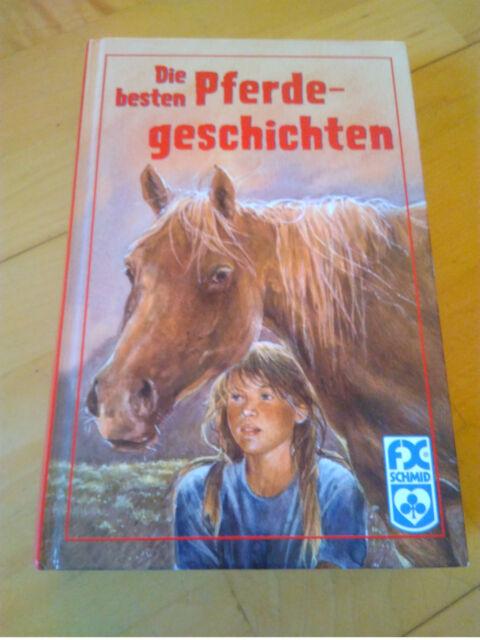 Die besten Pferdegeschichten