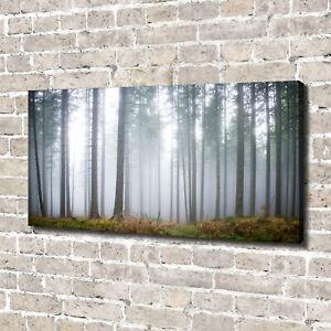 Leinwandbild-Kunst-Druck-140x70-Bilder-Landschaften-Nebel-im-Wald