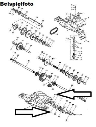 Plaquettes de frein bremssteine plaquette de frein set Dana spicer Foote engrenages tracteur-tondeuse
