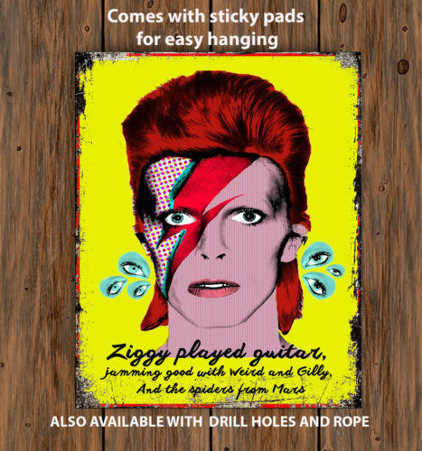 DAVID BOWIE LEGEND ZIGGY  SONG   Retro Vintage  Metal Wall Sign