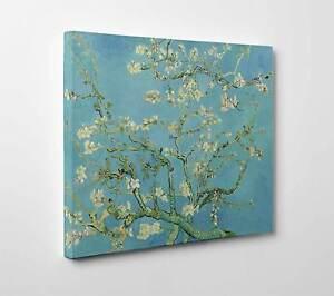 Quadro-Van-Gogh-Mandorlo-in-Fiore-Stampa-Tela-Poster-Pannello-Vernice-Pennellate