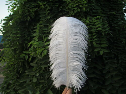 Wholesale beautiful ostrich feathers 6-24 inches 15-60 cm variety of colors