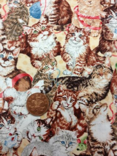 Cute Cats Kittens Playing Quilting Purr-fection Cotton 100/% South Sea Imports