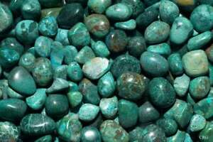 8-oz-Peru-Chrysocolla-Tumbled-Gemstone-Wholesale-Bulk-TRCH-8-7O25