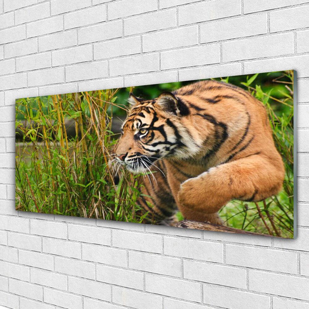 Impression sur verre acrylique Image tableau 125x50 Animaux Tigre