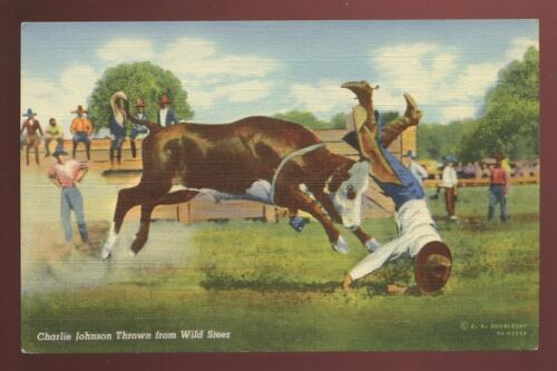 USA Rhodeo CHARLIE JOHNSON Thrown From Wild Steer vintage PPC