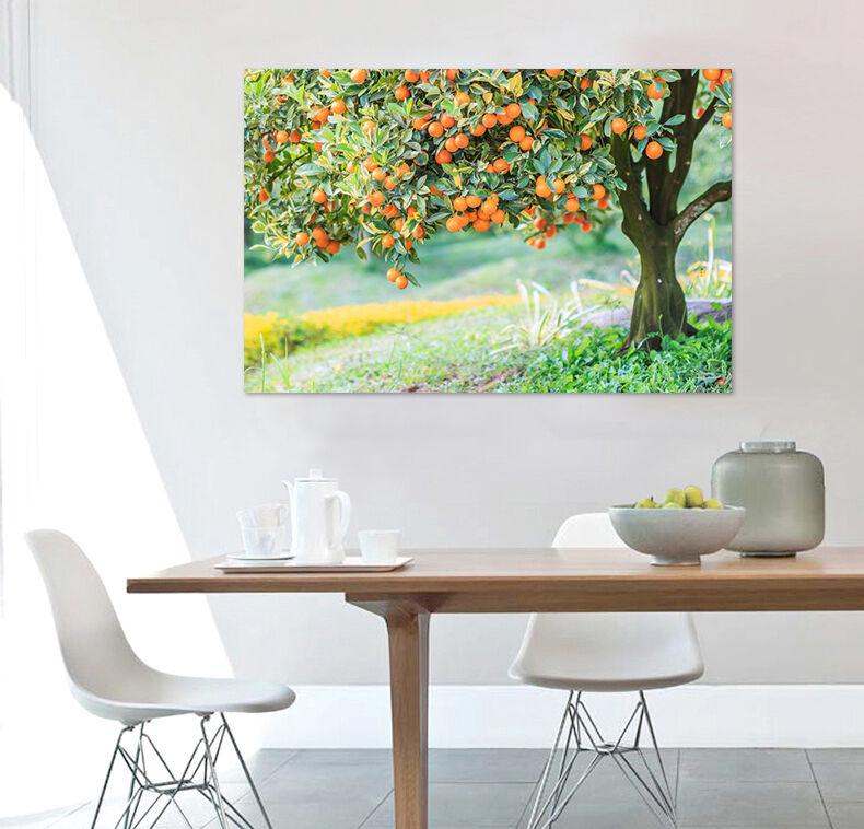 3D Goldene Orangen Bume Gras 8 Fototapeten Wandbild BildTapete AJSTORE DE Lemon