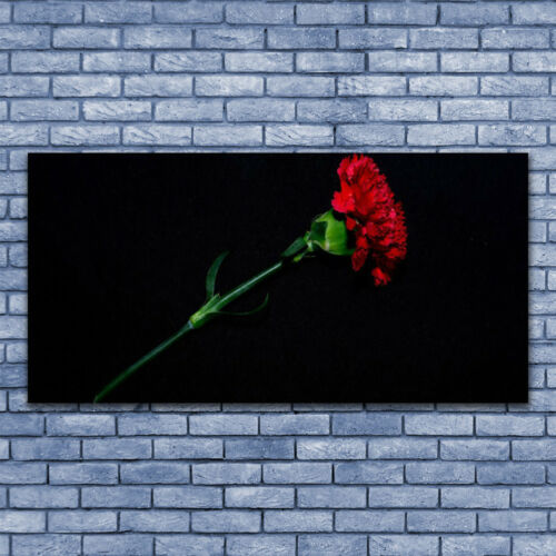 Acrylglasbilder Wandbilder aus Plexiglas® 140x70 Blume Pflanzen