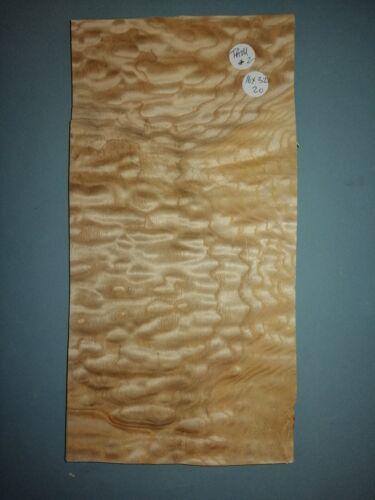 Consécutives feuilles de TAMO Frêne 16 x 32 cm TAM#2 marqueterie
