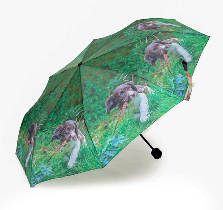 Country Matters Up to Mischief Mini Folding Umbrella - Cute Spaniel Puppy …