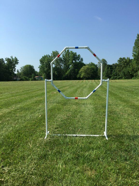 Dog Agility Equipment-Octagon Hoop Jump-Tons of fun and exercise