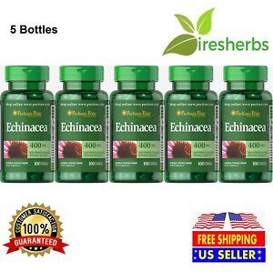 ECHINACEA-400MG-Immune-IMMUNITY-SUPPORT-Anti-Virus-Flu-Herbal-Supplement-500ct