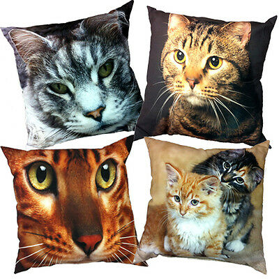 Cat picture Cushions