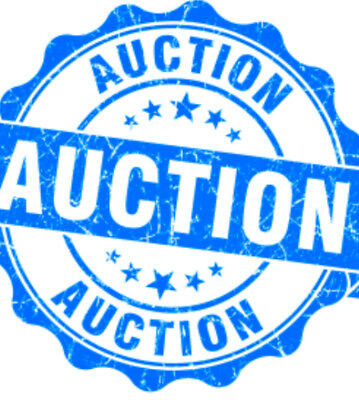 auction_noobs