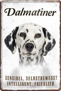 Dalmatiner Hund Hunderasse Charakter Wesen Deko Blechschild Poster Plakat A0449
