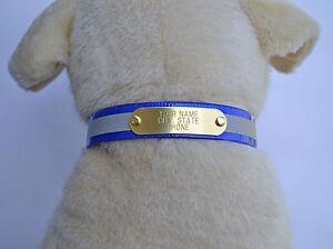 "WARNER REFLECTIVE DAYGLO DOG COLLAR />BLUE/< 25/""  FREE ENGRAVED BRASS ID TAG"