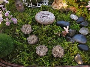 Image Is Loading Fairy Garden Tree Stump Stepping Stones 4 For