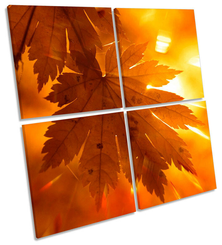 Floral Autumn Leaf MULTI CANVAS Wand Kunst Square Drucken