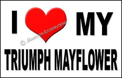 TRIUMPH Mayflower Novità FRIGO CALAMITA amo la mia