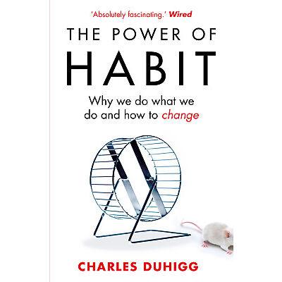 Charles Duhigg - The Power of Habit (Paperback) 9781847946249