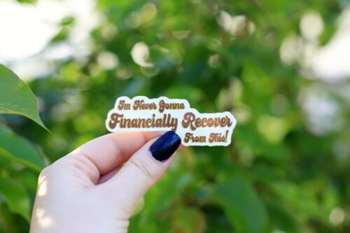 Details about  /I/'m Never Gonna Financially Recover Sticker Funny Gift Tiger