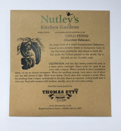 Nutley/'s Thomas Etty unusual /& heritage vegetable seeds Peruvian White Chilli