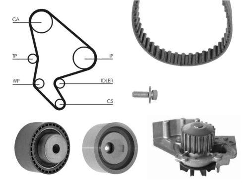 Water Pump And Timing Cam Belt Kit For Citroen Berlingo 1.9 D 70 4Wd 1.9 D 70