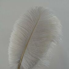 10pcs Ostrich Feathers 12-14inch(30-35cm) for Home Wedding Decoration (white)