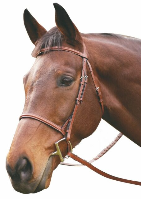 Showman English Raised Leather PONY Snaffle Bridle with Reins Black Brown