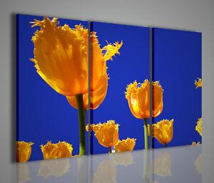Gemaelde-Moderne-Yellow-Tulpen-Bild-Modern-Tulpen-Einrichtung-Startseite-Buero