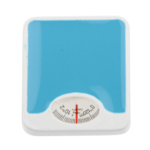 Blue Bathroom Scale Doll House Miniature Home Living Room Decoration 12th