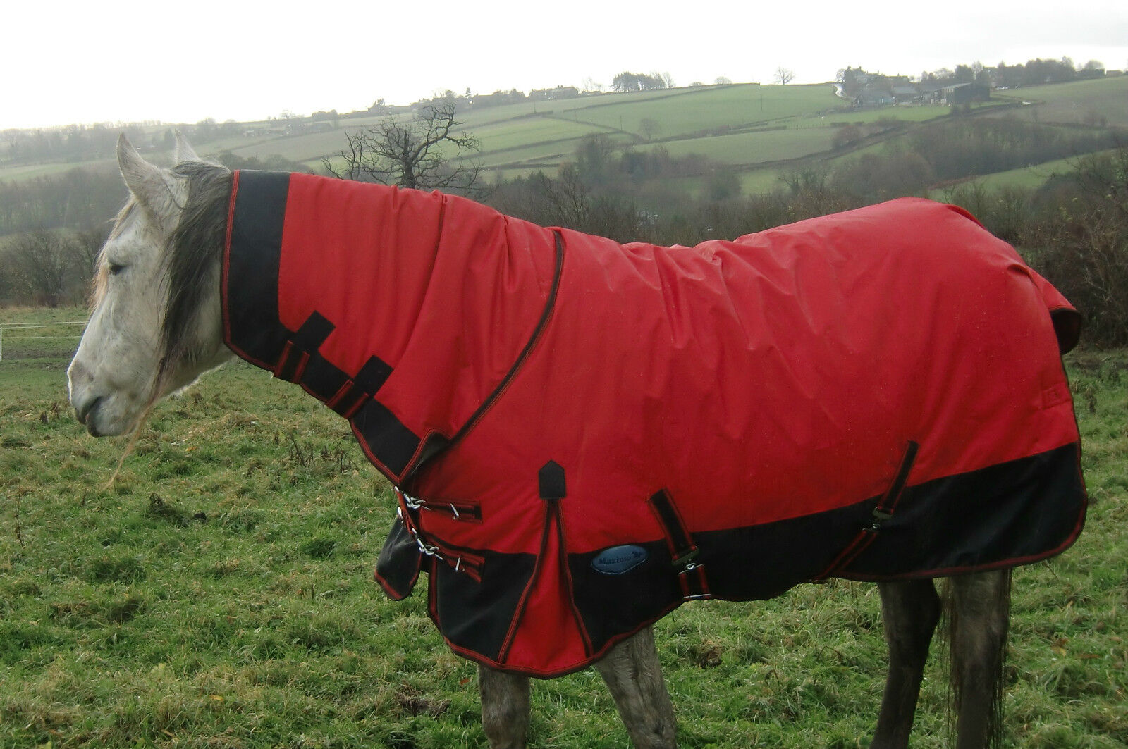 The Maximo Heavyweight Combo Turnout Rug - last few