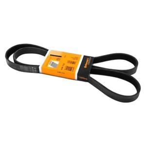 "8PJ1663655 J Section Poly V Belt 8 Ribs 1663mm Long Free UK POSTAGE 65.5/"""